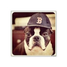 "Boston Fan Square Sticker 3"" x 3"""