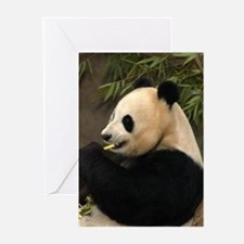 Another Giant Panda Greeting Cards (Pk of 10)