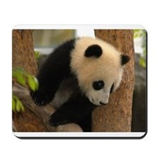 Cute Panda Cub Mousepad