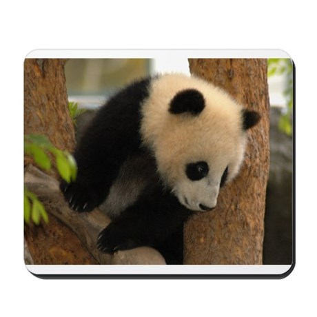 Cute Panda Cub Mousepad
