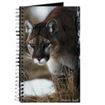Mountain Lion Journal