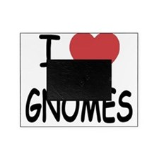 GNOMES Picture Frame