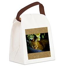 Sleeping Cat Canvas Lunch Bag
