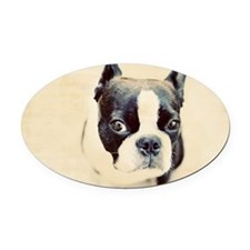 Boston Terrier Oval Car Magnet