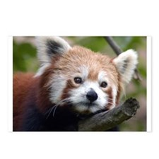 Red Chinese Panda Postcards (Package of 8)