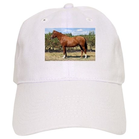 """New Forest 3"" Cap"