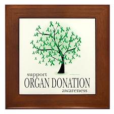 Organ-Donation-Tree Framed Tile