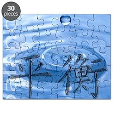 balance-water Puzzle