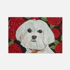 MalteseValentine 8x10 Rectangle Magnet
