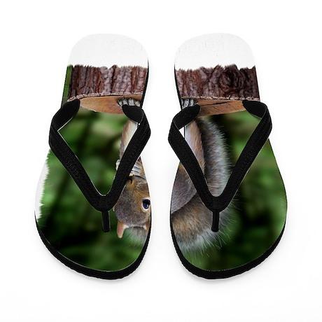 Squirrel nuts w Flip Flops