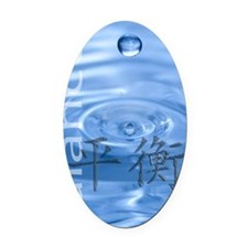balance-water1 Oval Car Magnet