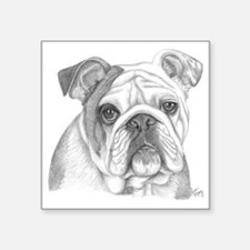 "Bulldog Square Sticker 3"" x 3"""