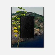 Cinque Terre - Rio Century Plant Picture Frame