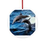 Bottlenose Dolphins Ornament