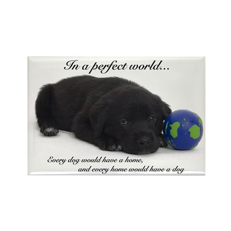 In a Perfect World (Labrador) Rectangle Magnet