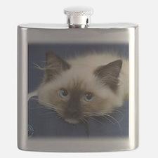 Ragdoll Cat 9W082D-020 Flask