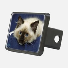 Ragdoll Cat 9W082D-020 Hitch Cover