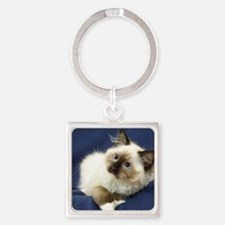 Ragdoll Cat 9W082D-011 Square Keychain
