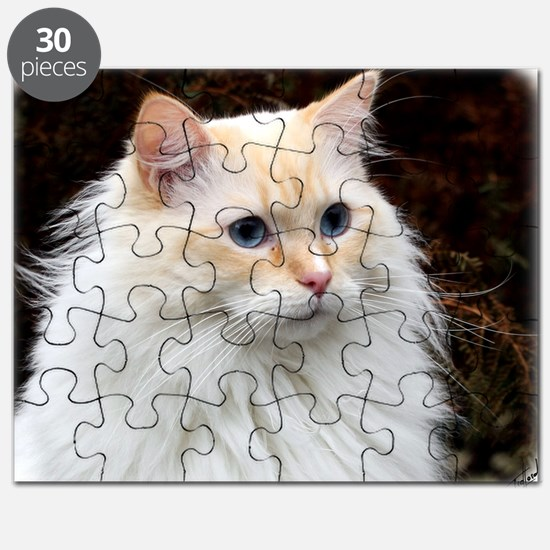 Ragdoll Cat 9Y448D-019 Puzzle