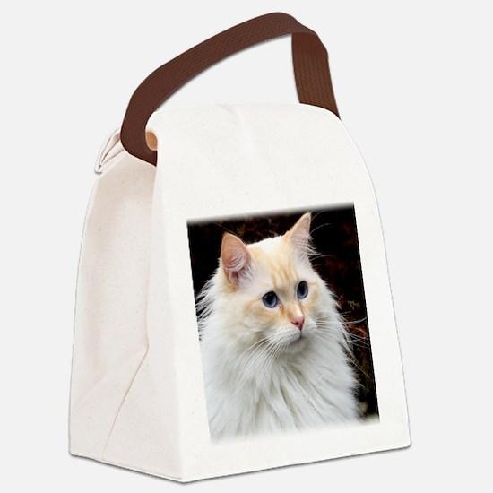 Ragdoll Cat 9Y448D-019 Canvas Lunch Bag
