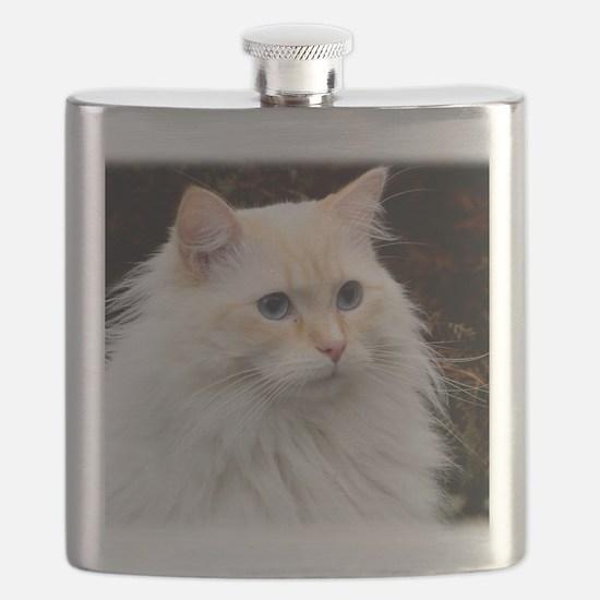 Ragdoll Cat 9Y448D-019 Flask
