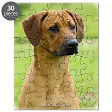 Rhodesian Ridgeback 9M044D-24 Puzzle