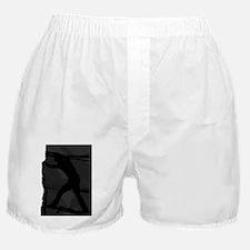 Climb Pad6 Boxer Shorts