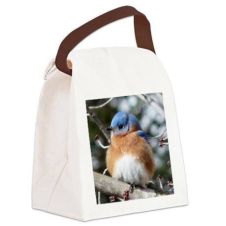 BBSGl1.5x1.5 Canvas Lunch Bag
