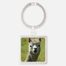 Alpaca 9R018D-004 Square Keychain