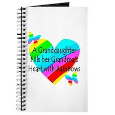 #1 GRANDDAUGHTER Journal