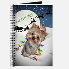 Yorkie coming to town ho ho Journal
