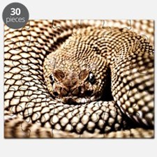 15x15 Snake Puzzle