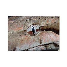 SnakelingsSmallPoster1 Rectangle Magnet