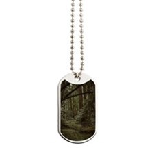 Muir Woods Mini Poster Dog Tags
