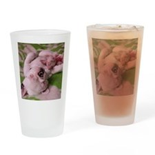 frenchie pink tile Drinking Glass