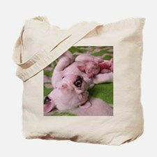 frenchie pink tile Tote Bag