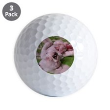 frenchie pink tile Golf Ball