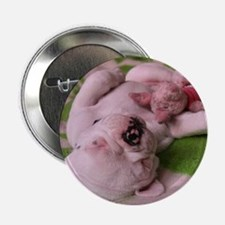 "frenchie pink tile 2.25"" Button"