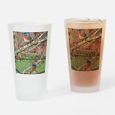 BB4.25x5.5SF Drinking Glass