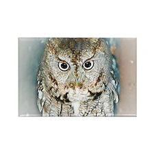 OWL (2) BIG Rectangle Magnet