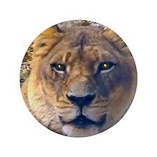 """female lion big 3.5"""" Button"""