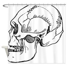 stone age skull Shower Curtain
