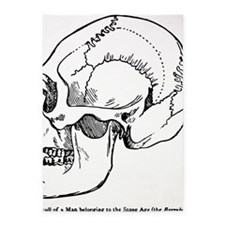 stone age skull 5'x7'Area Rug