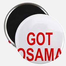 Obama Osama Magnet