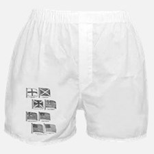 us flag evolution Boxer Shorts