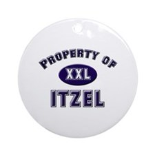 Property of itzel Ornament (Round)