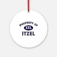 Property of itzel Ornament (Round)