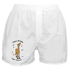 Pony Singing Birthday Boxer Shorts