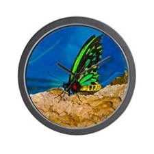 black and green butterfly EXRA BIG Wall Clock
