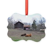 DSC_0005poster Ornament
